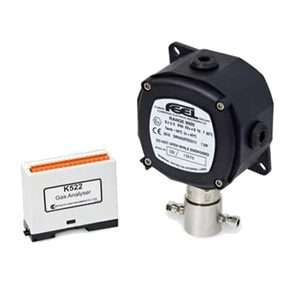Gas Sensors (H2 & O2)